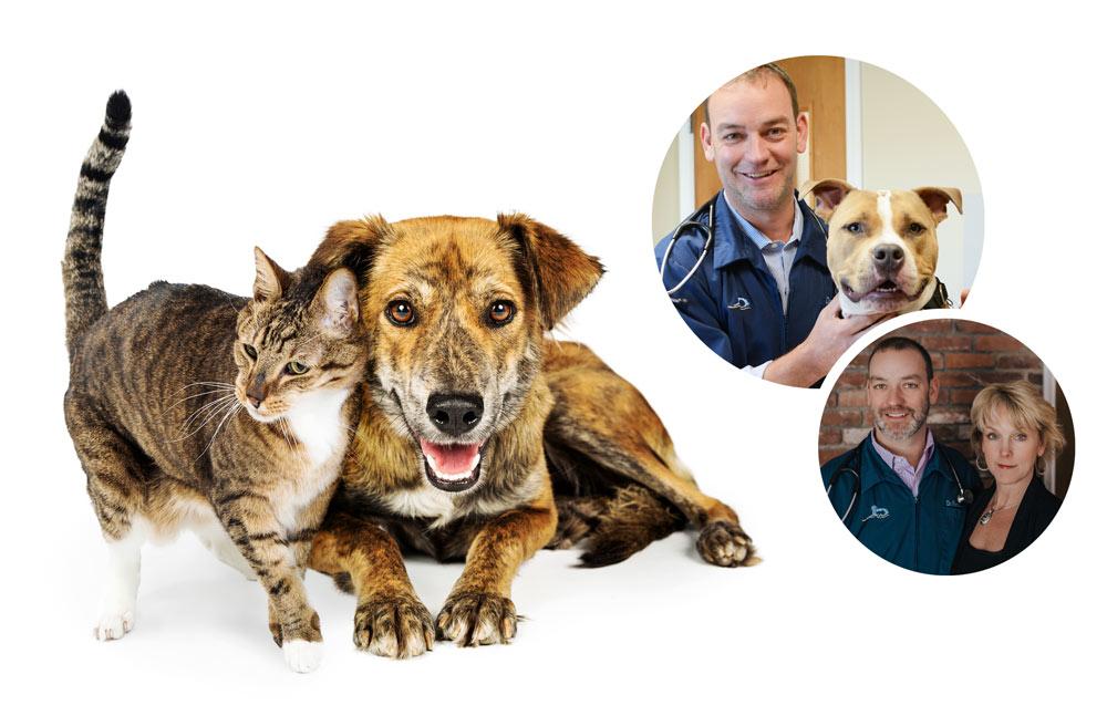 Home | Wilbraham Animal Hospital | Western Massachusetts
