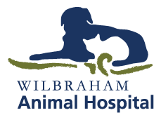 Wilbraham Animal Hospital